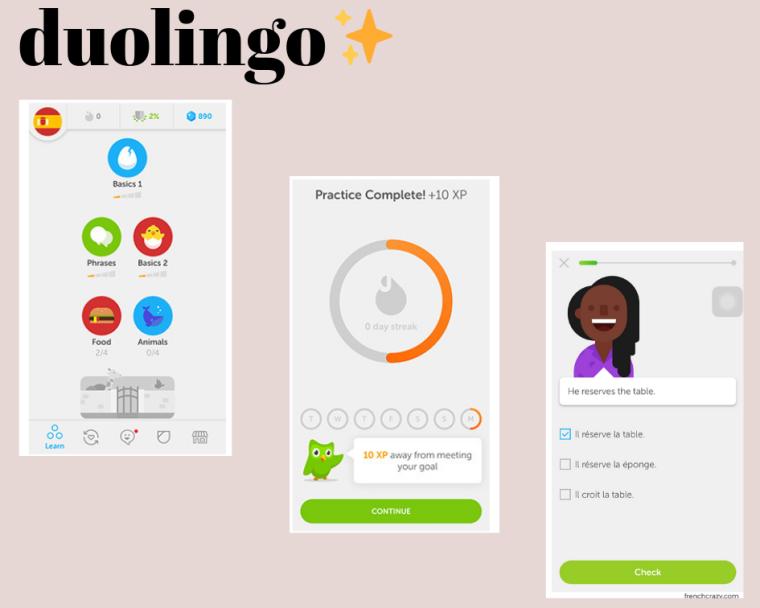 duolingo (1).png